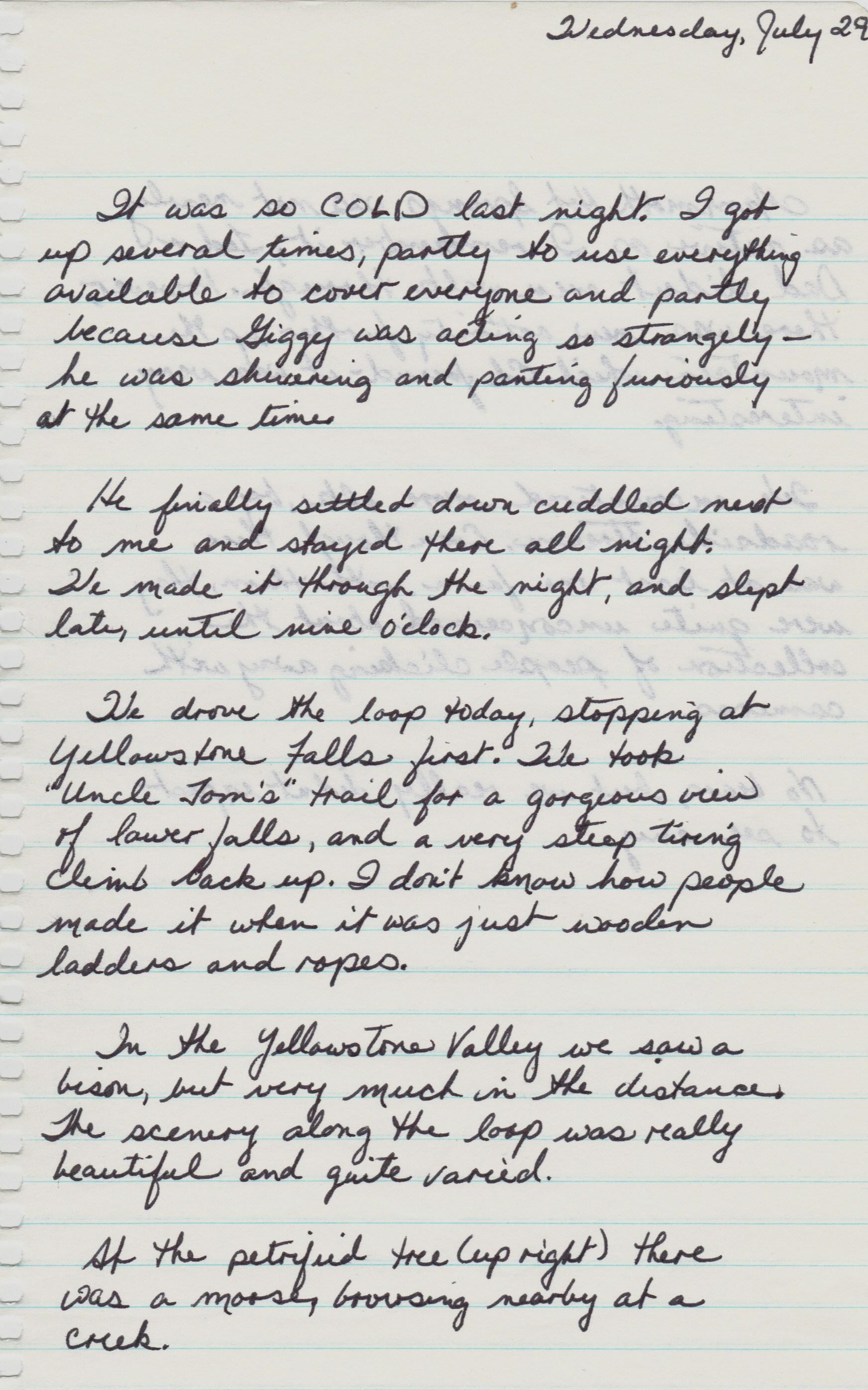 July 29, 1981